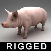 Świnia uzbrojona 3d model