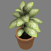 small potted plant 3d model