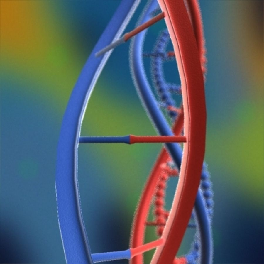 DNA royalty-free 3d model - Preview no. 5