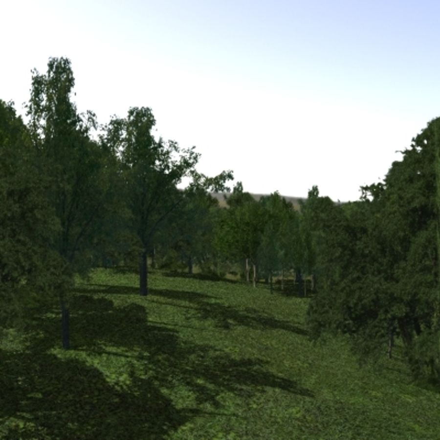 Forest lined grassy terrain royalty-free 3d model - Preview no. 7