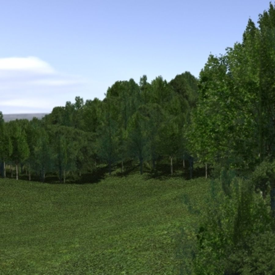 Forest lined grassy terrain royalty-free 3d model - Preview no. 1