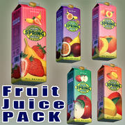 Voorjaarsvrucht Juice-pack 3d model
