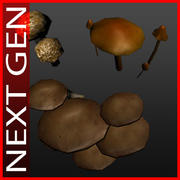 champignons 3d model