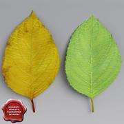 Kersenbladeren zomer herfst 3d model