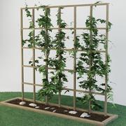 plant_garden_27 3d model