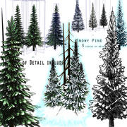 Pine & Snow Pine Tree Pack 3d model