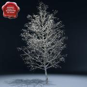 Kış Ağacı V3 3d model