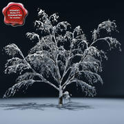 Kış Ağacı V4 3d model
