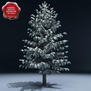Winter Tree V8 3d model