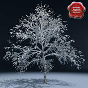 Winter Tree V1 3d model