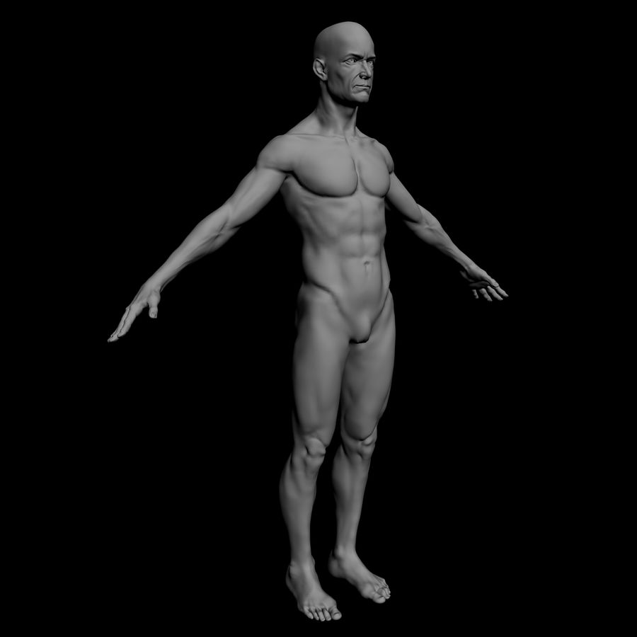 Bruce royalty-free 3d model - Preview no. 3