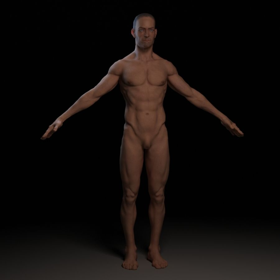 Bruce royalty-free 3d model - Preview no. 2