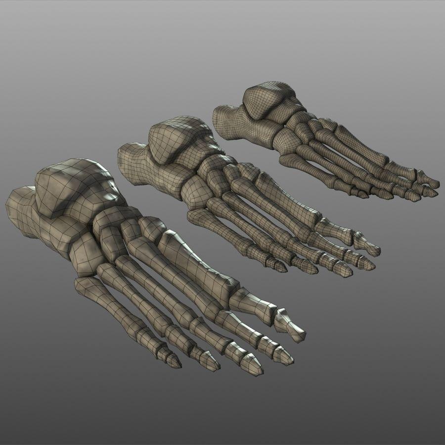 Huesos del pie humano royalty-free modelo 3d - Preview no. 3