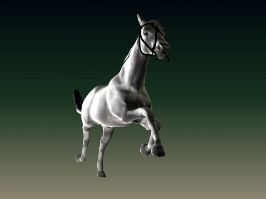 HORSE royalty-free 3d model - Preview no. 4