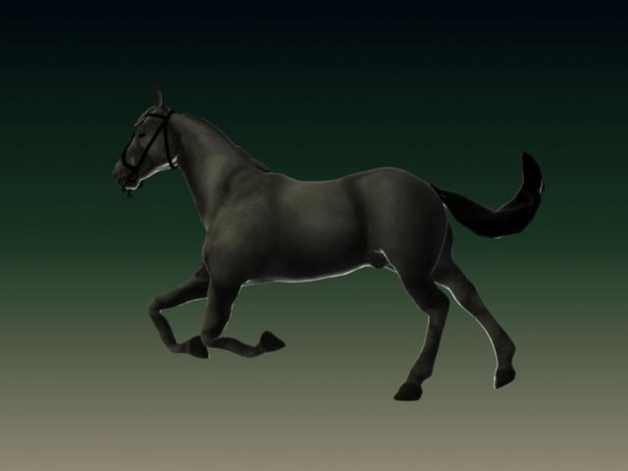 HORSE royalty-free 3d model - Preview no. 3
