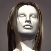 HairLines 3d model