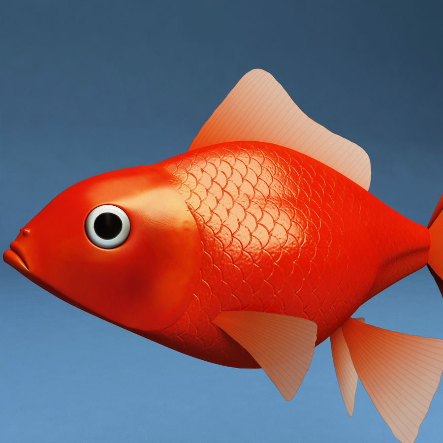 Gold Fish royalty-free 3d model - Preview no. 6