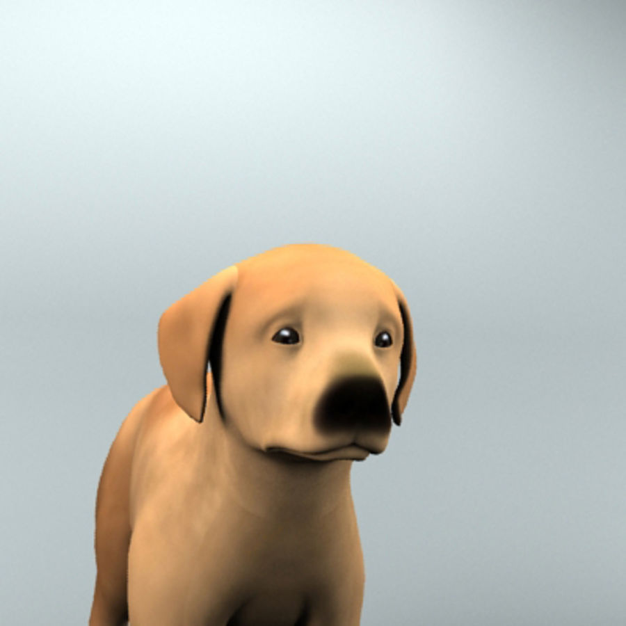 cucciolo royalty-free 3d model - Preview no. 2