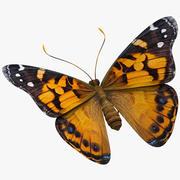 Fjärilmålad Lady 3d model