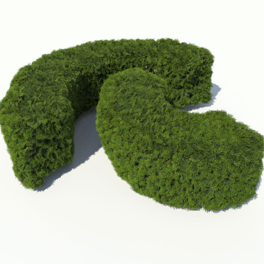Plant Cedar Hedge royalty-free 3d model - Preview no. 4