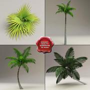 LowPoly Palms-verzameling 3d model