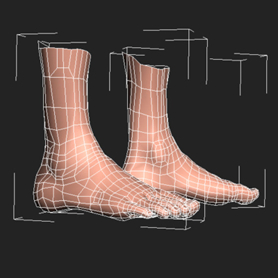 foot royalty-free 3d model - Preview no. 6