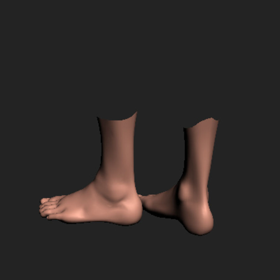 foot royalty-free 3d model - Preview no. 4