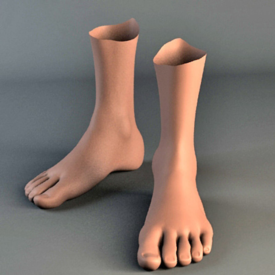 foot royalty-free 3d model - Preview no. 7