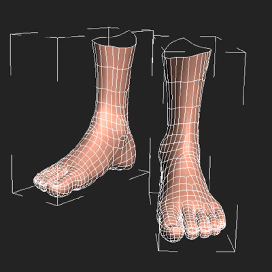 foot royalty-free 3d model - Preview no. 5