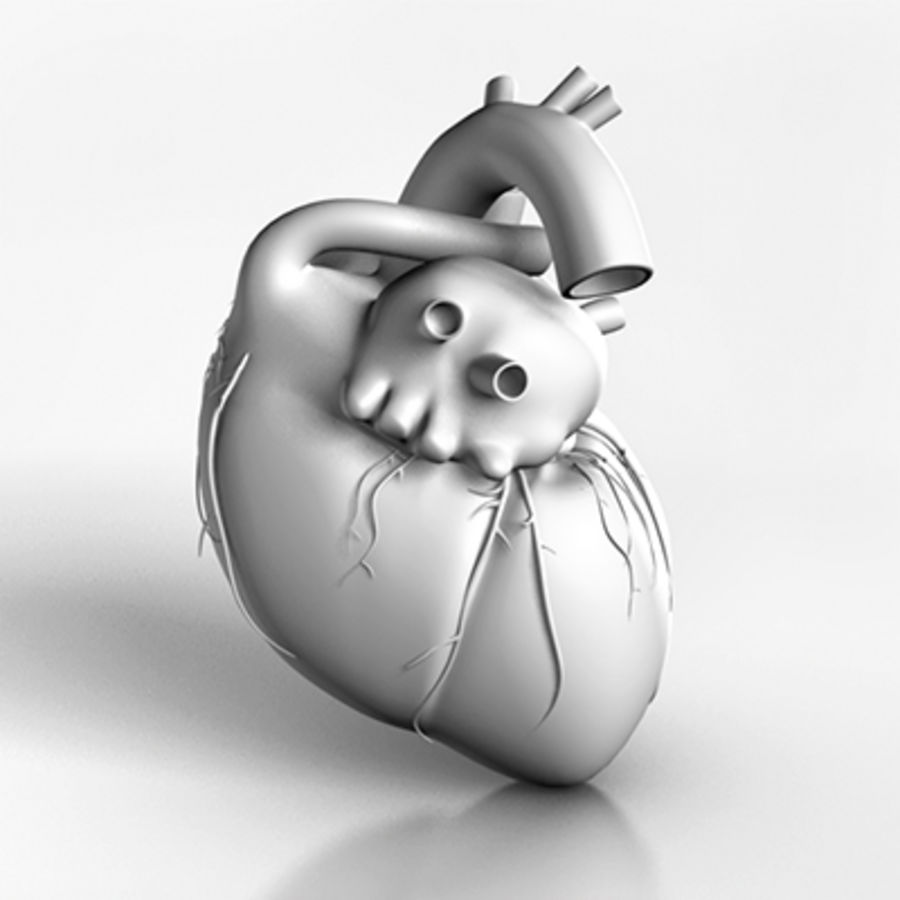 mänskligt hjärta royalty-free 3d model - Preview no. 7