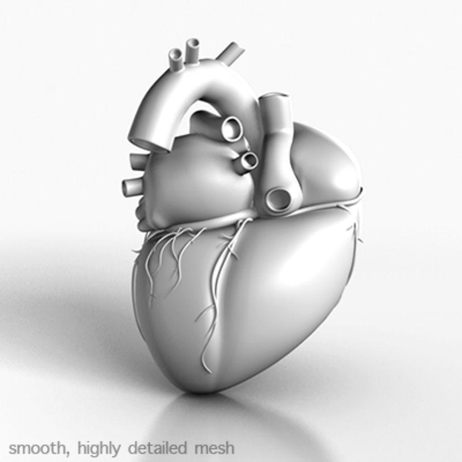 mänskligt hjärta royalty-free 3d model - Preview no. 2
