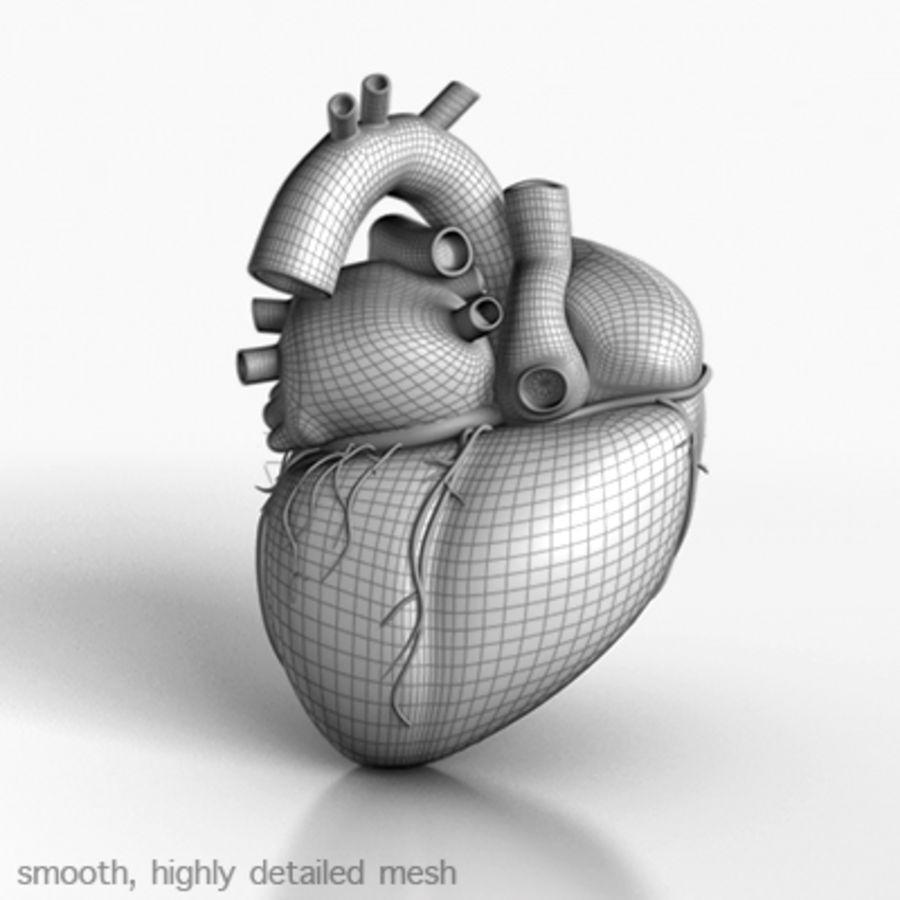 mänskligt hjärta royalty-free 3d model - Preview no. 3