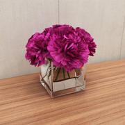 bouquet d'oeillets 3d model