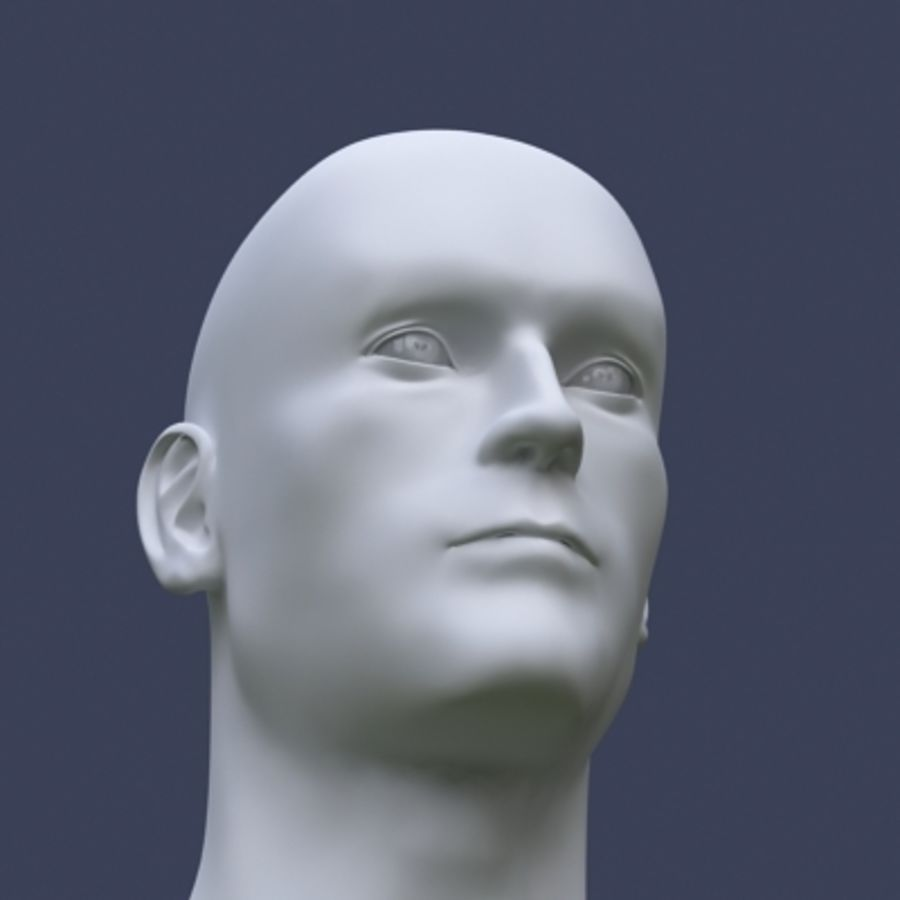 Tête masculine royalty-free 3d model - Preview no. 3