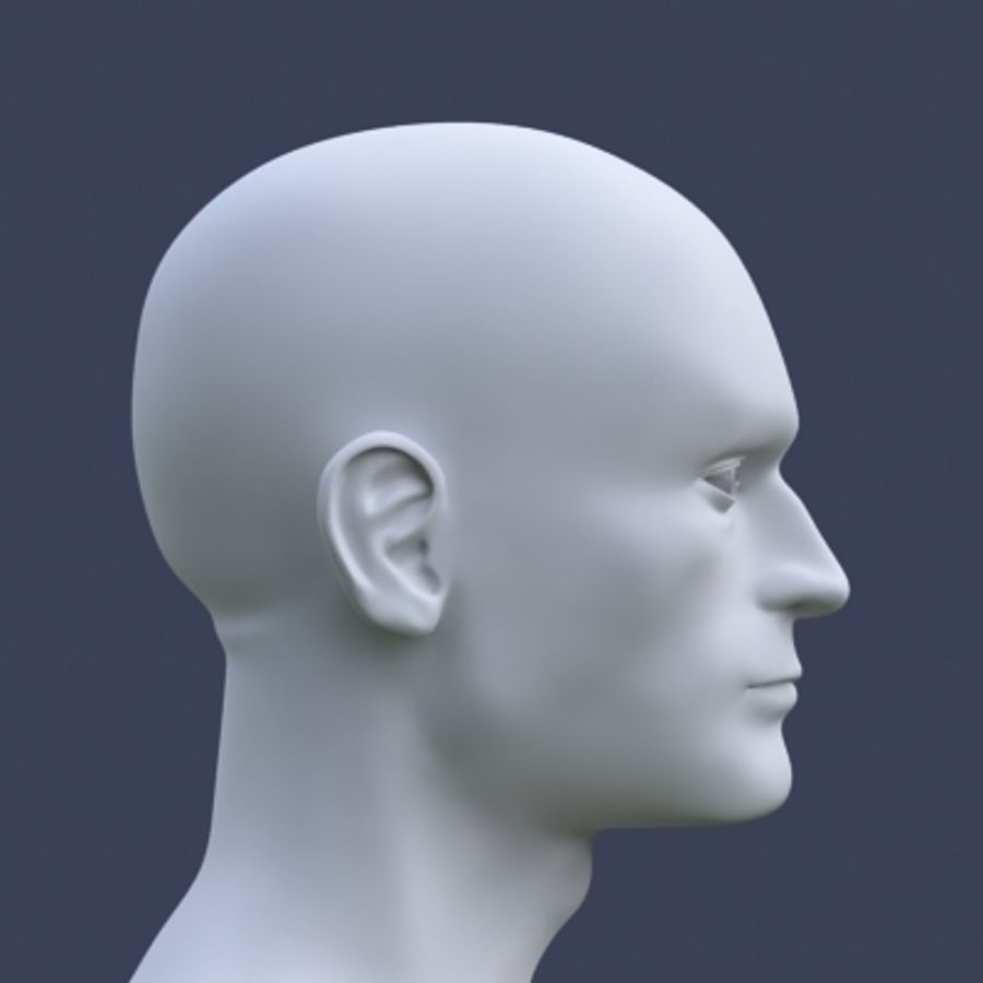 Tête masculine royalty-free 3d model - Preview no. 2
