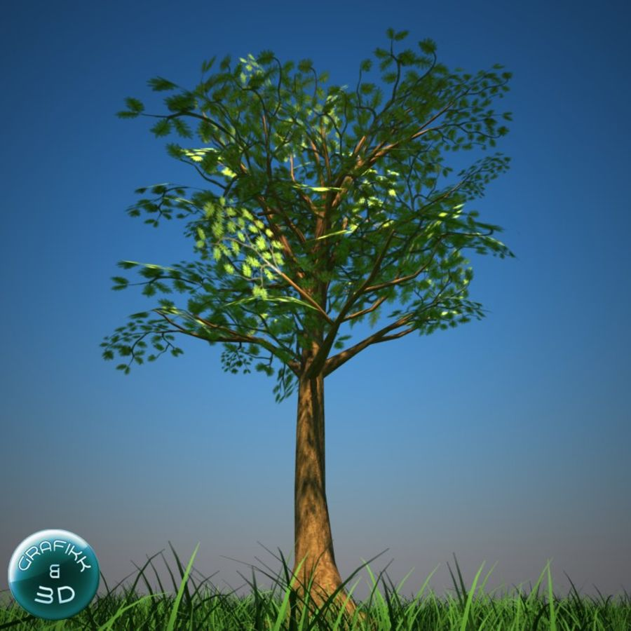 Tree royalty-free 3d model - Preview no. 2