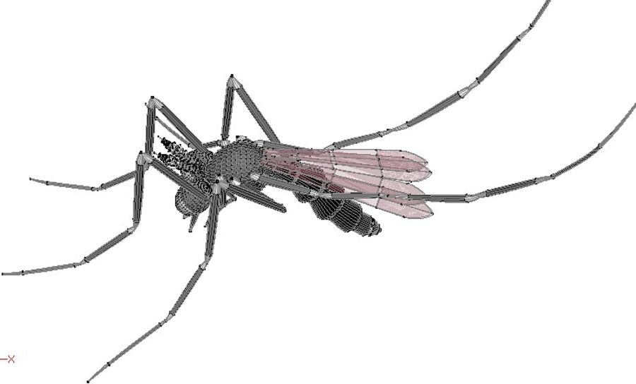 Mosquito royalty-free 3d model - Preview no. 9