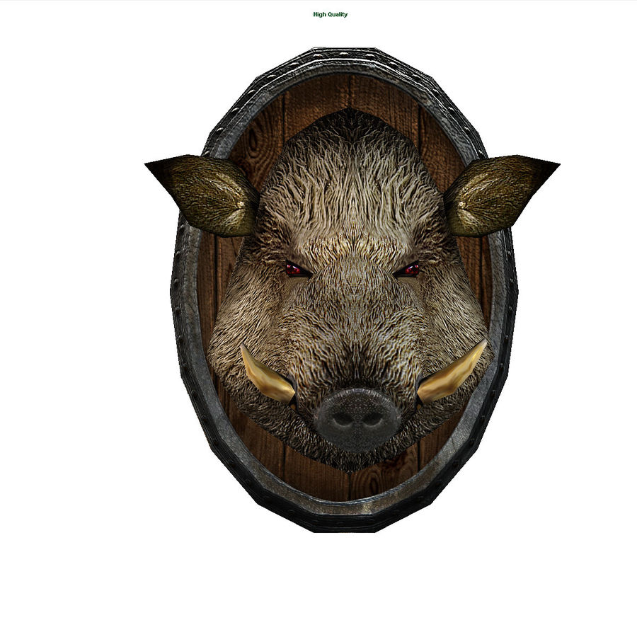 testa di cinghiale royalty-free 3d model - Preview no. 3