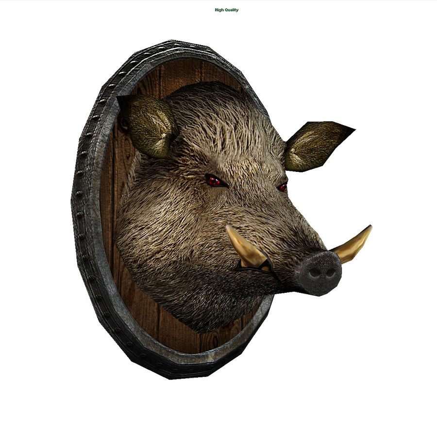 testa di cinghiale royalty-free 3d model - Preview no. 1
