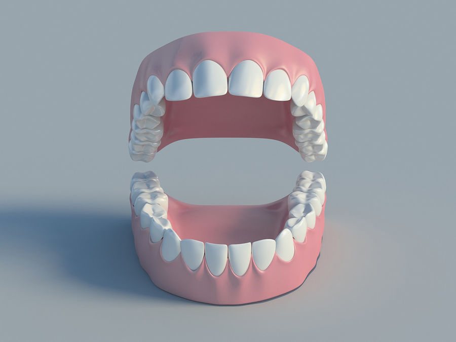 人类的牙齿 royalty-free 3d model - Preview no. 2