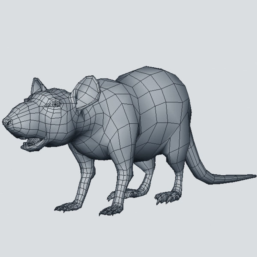 Rato royalty-free 3d model - Preview no. 7