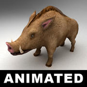 Yaban domuzu 3d model