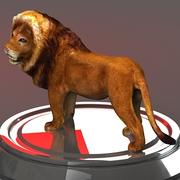3D leeuw 3d model