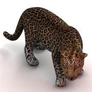 леопард 3d model
