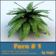 Fern # 1 3d model