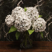 hydrangea in vase 3d model