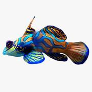 Mandarin Fish 3d model