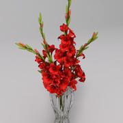 gladiolus Bouquet vase 3d model