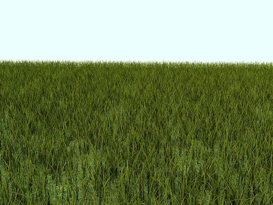 Grass tiled royalty-free 3d model - Preview no. 2