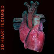 Coeur 3D texturé 3d model